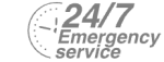 24/7 Emergency Service Pest Control in Palmers Green, N13. Call Now! 020 8166 9746
